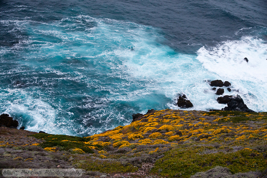 The water of the ocean to the west of Point Sur Light Station was turned sea foam green thanks to the action of waves and high winds.  In this image the blooming hillside is in the frame, providing contrast.