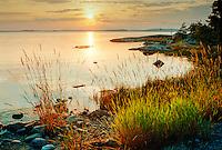 Solnedgång över en spegelblank Mysingen sedd från en strand på Rånö i Stockholms skärgård. / Sunset over a mirror Mysingen seen from a beach on Rånö in the Stockholm archipelago Sweden.