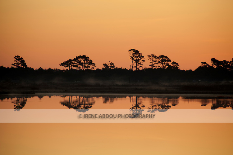 At sunrise, distant trees are silhouetted and reflected in the waters of the Chincoteague National Wildlife Refuge on Assateague Island, Virginia.
