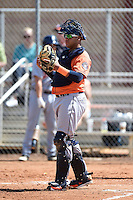 Houston Astros catcher Alfredo Gonzalez (59) during a minor league spring training game against the Detroit Tigers on March 21, 2014 at Osceola County Complex in Kissimmee, Florida.  (Mike Janes/Four Seam Images)