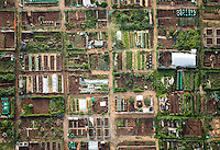 Community garden, Boulder, Colorado. May 2014. 84150