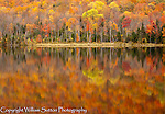 Fall colors reflected in lake, Vermont.