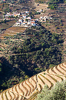 vineyards view to sao cristovao do douro quinta do noval douro portugal