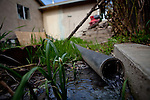 Grey water from Rosario Cedeano's laundry flows into yard in the Parklawn neighborhood in Modesto, Calif., February 22, 2012.