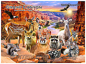 Howard, REALISTIC ANIMALS, REALISTISCHE TIERE, ANIMALES REALISTICOS, paintings+++++Grand Canyon 2poster,GBHRPROV121,#A# ,puzzles
