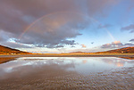 Isle of Lewis and Harris, Scotland: A rainbow spans the expansive sand bay of Luskentyre beach on South Harris Island
