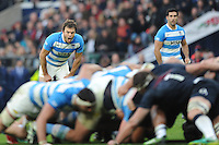 Juan Martín Hernández of Argentina barks orders during the Old Mutual Wealth Series match between England and Argentina at Twickenham Stadium on Saturday 26th November 2016 (Photo by Rob Munro)