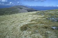 Cairngorm Plateau, Scotland, UK