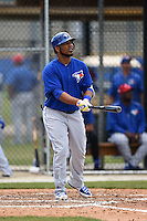 Toronto Blue Jays Edwin Encarnacion (10) during a minor league spring training game against the New York Yankees on March 24, 2015 at the Englebert Complex in Dunedin, Florida.  (Mike Janes/Four Seam Images)