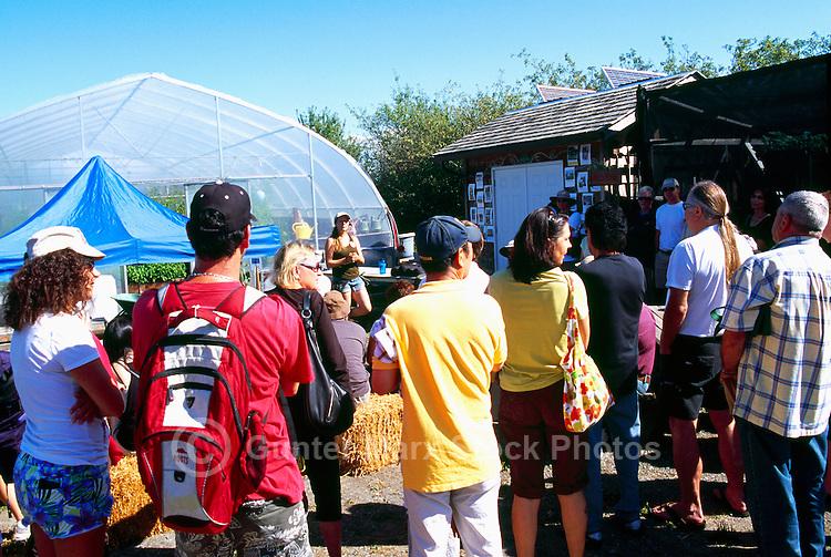 5th Annual Garlic Festival, August 2013 (hosted by The Sharing Farm) at Terra Nova Rural Park, Richmond, BC, British Columbia, Canada - Garlic Lovers attend a Seminar on How to Grow Garlic
