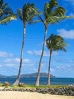 Palm trees at a Kahala beach provide a rough frame for the distant tuff cones that are known as Hanauma Bay and Koko Head, Oahu.