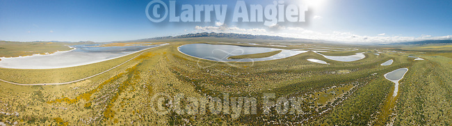 Aerial panorama of the colorful golden wildflowers cover the Carrizo Plain National Monument from a drone between the soda lakes in the valley floor during spring.<br /> <br /> Assembled from six frames.