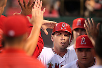 Los Angeles Angels outfielder Peter Bourjos #25 is greeted by teammates after scoring against the Chicago White Sox at Angel Stadium on August 23, 2011 in Anaheim,California. Los Angeles defeated Chicago 5-4.(Larry Goren/Four Seam Images)