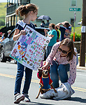 WINSTED,  CT-051819JS10- Oksana Stachowitcz of Colebrook, puts down her dog, Mrs. T, a15-year-old Chihuahua to walk for a while as she and her daughter Sophia, 6, march in the 83rd annual Rotary Club Pet Parade along Main Street in Winsted on Saturday. <br /> Jim Shannon Republican American
