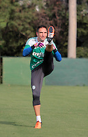 SÃO PAULO,SP, 12.11.2015 - FUTEBOL-PALMEIRAS - Fernando Prass durante treino na Academia de Futebol na Barra Funda região oeste de São Paulo na tarde desta quinta-feira (12). (Foto: Marcio Ribeiro/Brazil Photo Press)