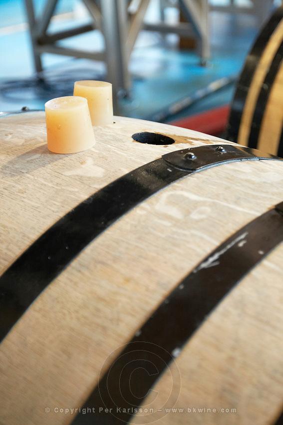 barrels with fermenting wine silicone bungs barrel hoops Bodegas Margon , DO Tierra de Leon , Pajares de los Oteros spain castile and leon