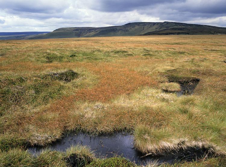 Coldharbour Moor, Peak District, UK
