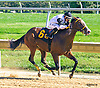 Strawberry Red winning at Delaware Park on 10/5/16