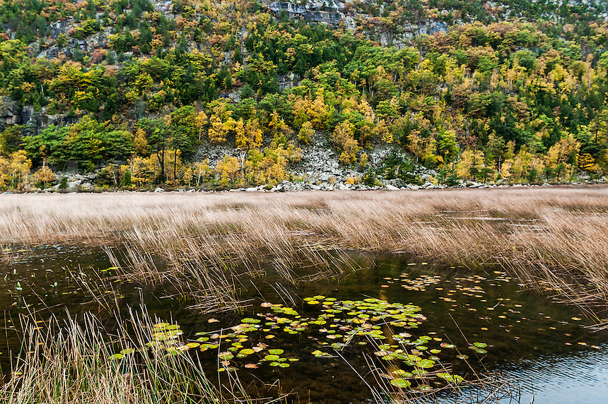 The tarn at the base of Dorr Mountain, Acadia National Park, Maine, USA