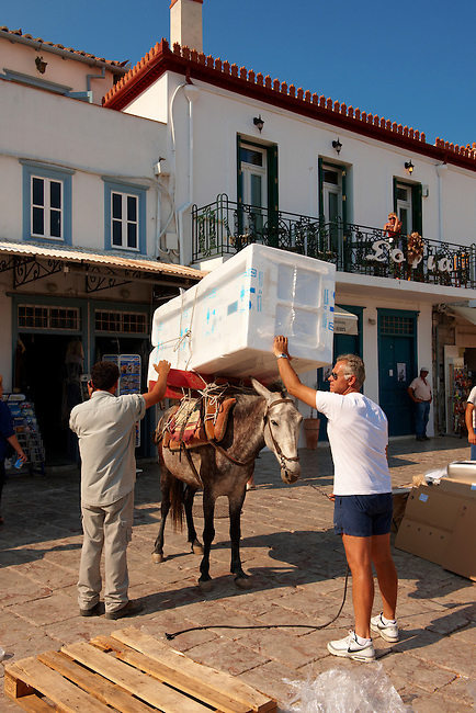 Pack Pony moving a fridge on Hydra,  Greek Saronic Islands.