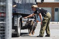 13-06-17 Polizei Bomben-Spürhund