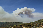 August 20, 2001 Coulterville, California  -- Creek Fire – View of Creek Fire from Greeley Hill Road.  The Creek Fire burned 11,500 acres between Highway 49 and Priest-Coulterville Road a few miles north of Coulterville, California.