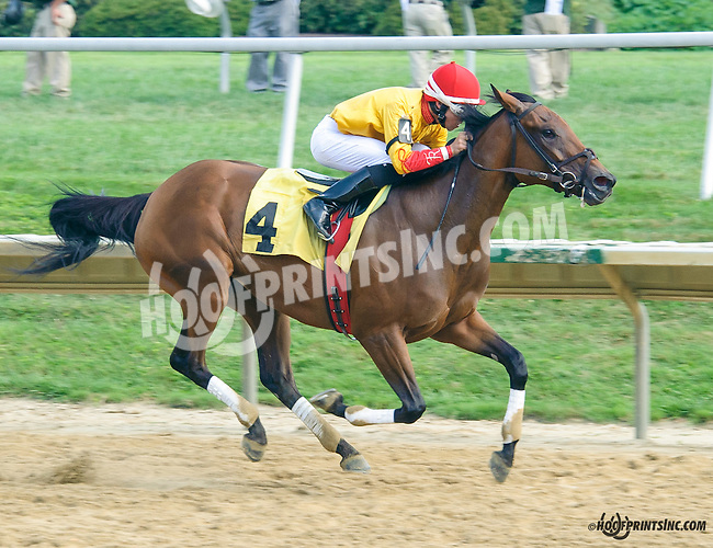 Charli Sunshine winning at Delaware Park on 8/26/15