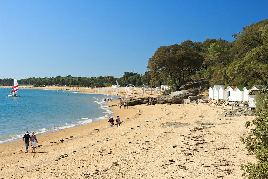 France, Vendée (85), île de Noirmoutier, Noirmoutier-en-l'Île, le bord de mer au Bois de la Chaise // France, Vendee, Island of Noirmoutier, Noirmoutier en lIle, the Bois de la Chaise, the beach