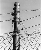 Fence post, 1987.   &#xA;<br />