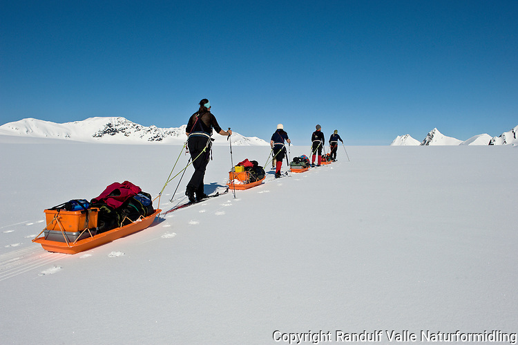 Skiløpere med pulk på Borebreen på Svalbard. ---- Skiers with sleds on the glacier Borebreen, Svalbard.