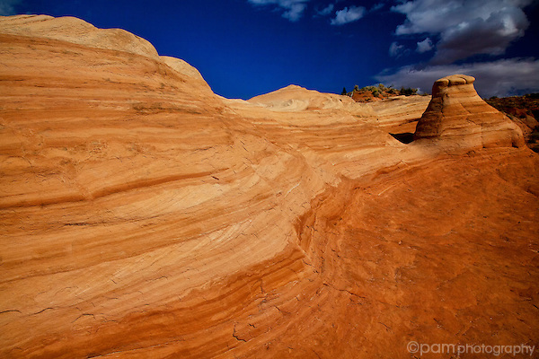 Sandstone wave in Utah's desert southwest.