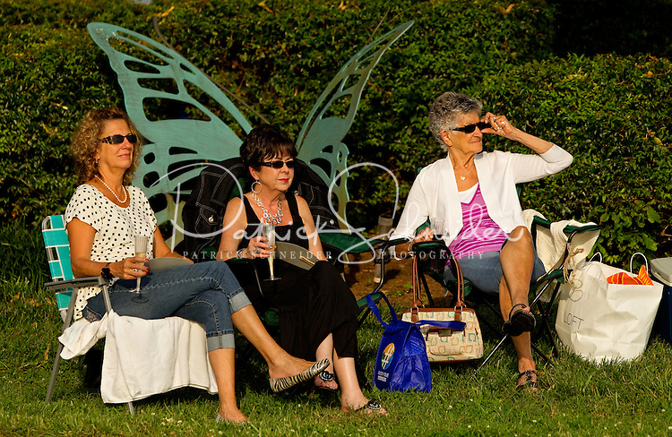 """Event photography of the Charlotte Symphony performing in a free outdoor concert June 17, 2012 at Duke Energy's McGuire Nuclear Station EnergyExplorium in Cornelius, NC. The symphony orchestra performed a """"musical travels"""" program."""