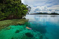 A female snorkeler swims above the coral reefs surounding uninhabited  Restorf Island in Kimbe Bay, off New Britain Island, Papua New Guinea.
