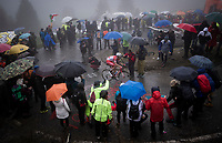 Mattia Cattaneo (ITA/Androni Giocattoli-Sidermec) up the extremely wet, cold & misty Cole di Mortirolo <br /> <br /> Stage 16: Lovere to Ponte di Legno (194km)<br /> 102nd Giro d'Italia 2019<br /> <br /> ©kramon