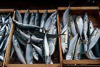 Italien, Elba, Portoferraio, Fischverkauf im Hafen