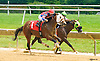 Chaplain Rich winning at Delaware Park on 6/23/16