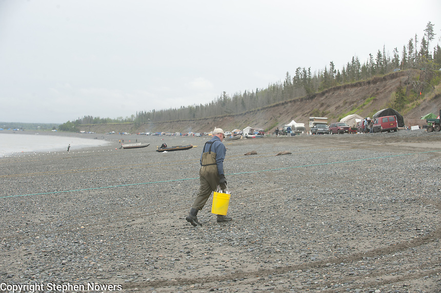 A man hauls a bucket of cleaned red salmon caught in the Kasilof River personal-use setnet fishery up the beach.