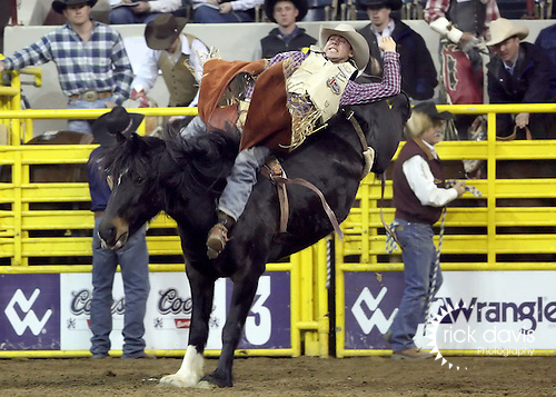 1/23/09--Photo by Rick Davis--PRCA cowboy Jason Havens of Prineville, Oregon competes on the Kesler Rodeo Company bronc Steve's Apple during action at the 103rd National Western Stock Show and Rodeo in Denver, Colorado.