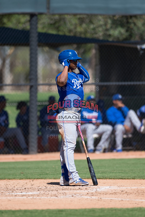 Kansas City Royals right fielder Juan Carlos Negret (17) at bat during an Instructional League game against the Chicago White Sox at Camelback Ranch on September 25, 2018 in Glendale, Arizona. (Zachary Lucy/Four Seam Images)