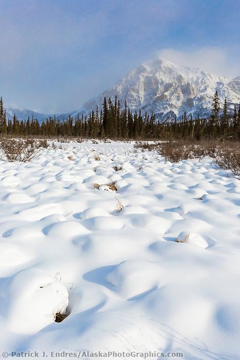 Snow covered tussocks and Mount Dillon of the Brooks Range Mountains, Alaska.