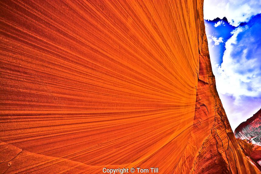 Magnificent Wall        Lake Powell, Utah.Glen Canyon National Recreation Area.Explorer Canyon.Escalante Arm