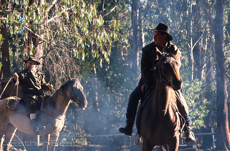 Stockmen of the High Country. Snowy Mountains, near Mt Buller, Victoria