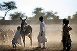 Boys play at Dabalediya borehole near Klaimendo village in North Darfur, 05 Dec, 2008. Despite the fact that North Darfur is believed to currently have the highest concentration of NGOs in the world, the creation of Klaimendo district and village is the work of people born and raised in the area, rather than an outside aid agency. (John D McHugh)