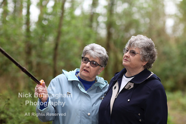 Elderly twin sisters walking in the woods - shallow depth of field