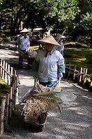 Women gardeners pushing wheel barrows in Kenrokuen Gardens in Kanazawa. Wednesday October 15th 2008