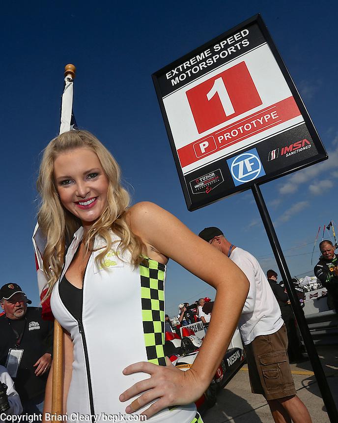 the 12 Hours of Sebring, Sebring International Raceway, Sebring, FL, March 2014.  (Photo by Brian Cleary/www.bcpix.com)