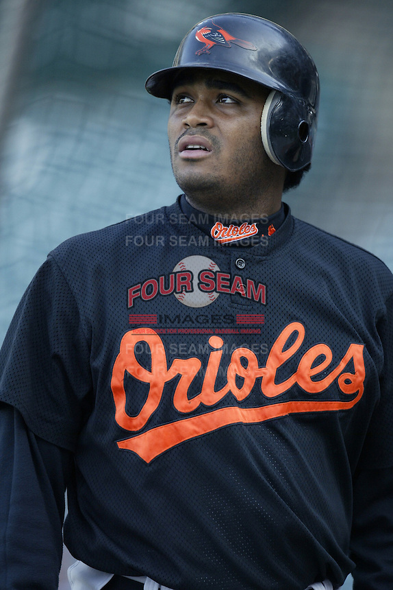 Tony Batista of the Baltimore Orioles before a 2002 MLB season game against the Los Angeles Angels at Angel Stadium, in Los Angeles, California. (Larry Goren/Four Seam Images)