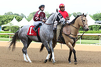 HOT SPRINGS, AR - April 14: Chanel's Legacy #1 with jockey Alex Birzer walks in the post parade prior to the Fantasy Stakes at Oaklawn Park on April 14, 2017 in Hot Springs, AR. (Photo by Ciara Bowen/Eclipse Sportswire/Getty Images)