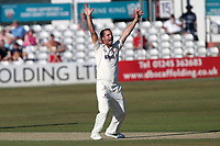 Lewis Gregory of Somerset appeals for the wicket of Tom Westley during Essex CCC vs Somerset CCC, Specsavers County Championship Division 1 Cricket at The Cloudfm County Ground on 25th June 2018