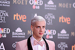 Eduardo Casanova attends to the Red Carpet of the Goya Awards 2017 at Madrid Marriott Auditorium Hotel in Madrid, Spain. February 04, 2017. (ALTERPHOTOS/BorjaB.Hojas)